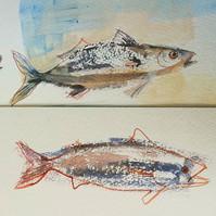 #fish #watercolour.jpg