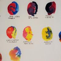 Creative+Watercolours,+Primary+Colour+Ex