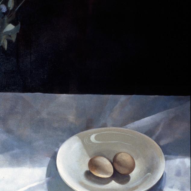 Eggs in Sunlight
