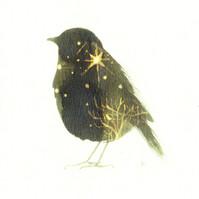 starlight bird original.jpg