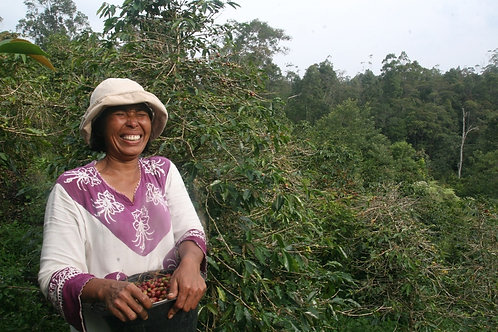 Indonesia Aceh Gayo - Queen Ketaira G1 - ORG - Per KG