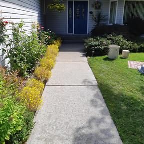 Walkway - Post treatment