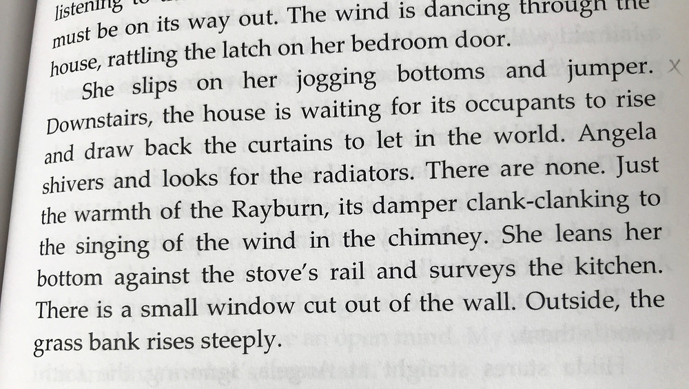 Extract from 'The China Bird' by Bryony Doran