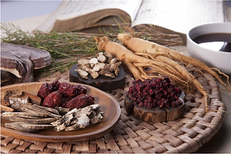 traditional medicine array.png