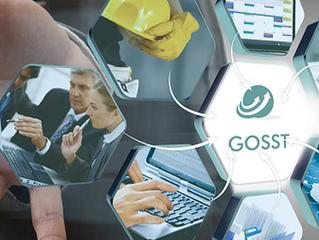 GOSST La mejor solucion Online en Salud y Seguridad del Trabajo