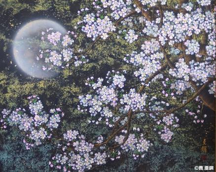 月夜櫻花Ⅱ