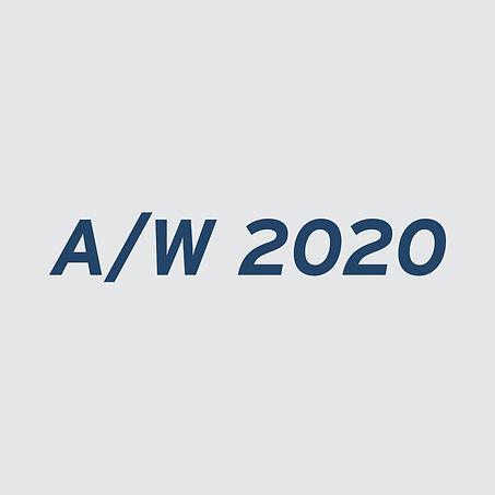 aw 2020 banner final copy.jpg