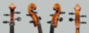 Cello scroll.jpg