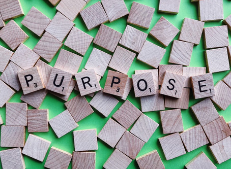Why Purpose is Important