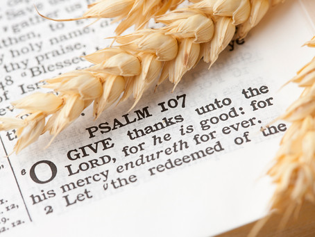 Finding Refuge in the Psalms