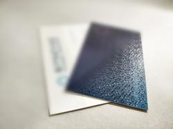 Business Card Vivid UV (Scodix)