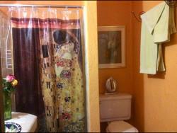 Casa Joanna bath shower main level