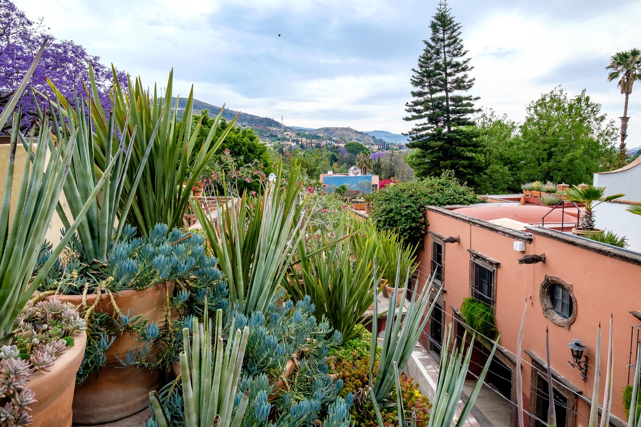View facing south