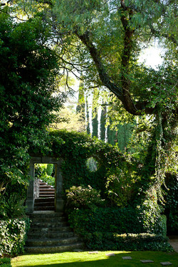 Villa Glenville garden path