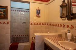 master bath tub shower