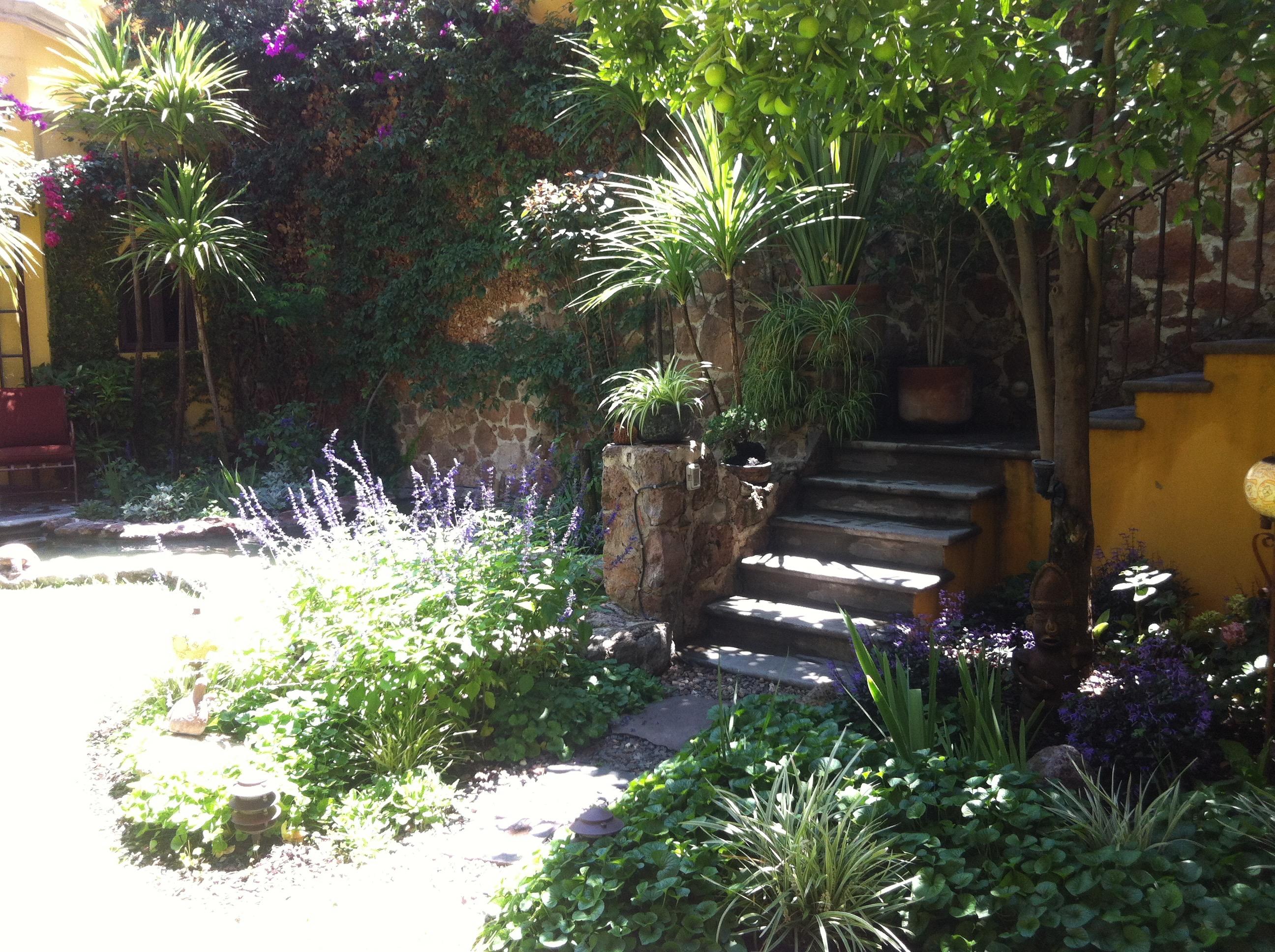 villaclarabella_10 garden