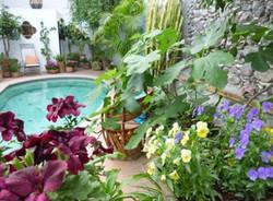 Casa Joanna garden patio with pool