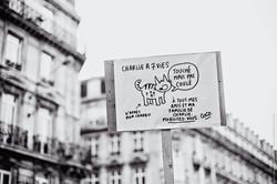 Bruxelles janvier 2015-1