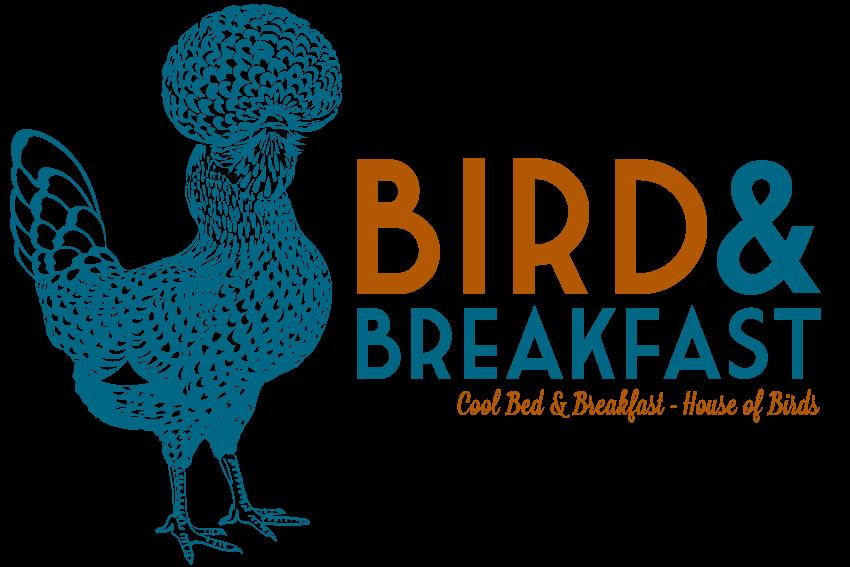 graphiste-bruxelles-marco-huguenin-birdandbreakfast-logo04