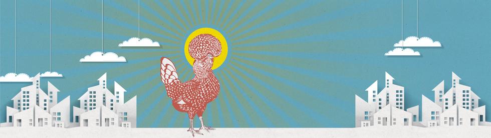graphiste-bruxelles-marco-huguenin-birdandbreakfast-bandeau