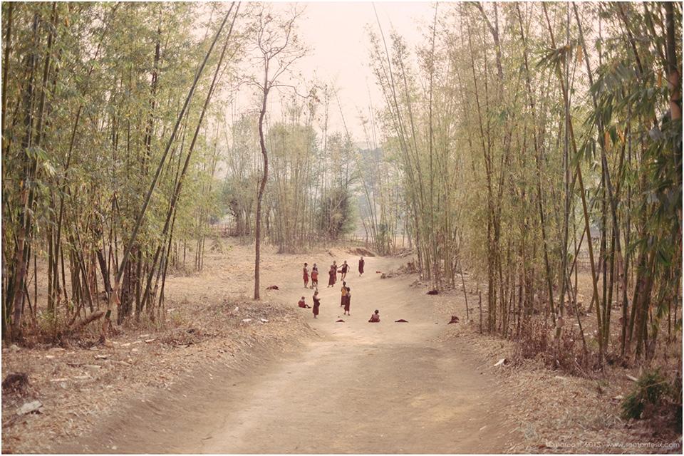 Birmanie-Mars-2016-2048-122