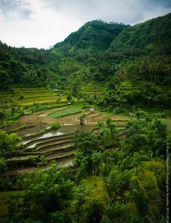 photographe-bruxelles-indonesie-marco-huguenin-52