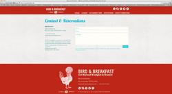 creation-site-birdandbreakfast-bruxelles03