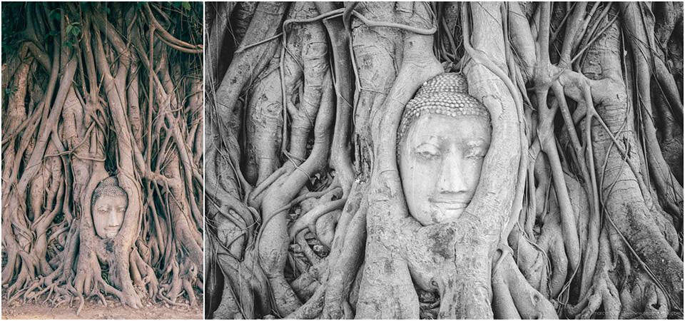 Birmanie-Mars-2016-2048-186