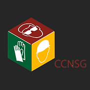 CCNSG logo