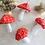 Thumbnail: Cogumelos Pequenos