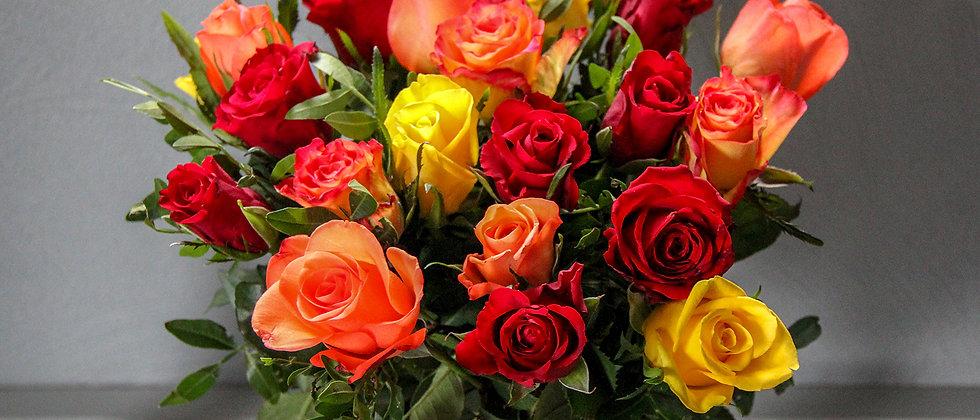 Rose multicouleur