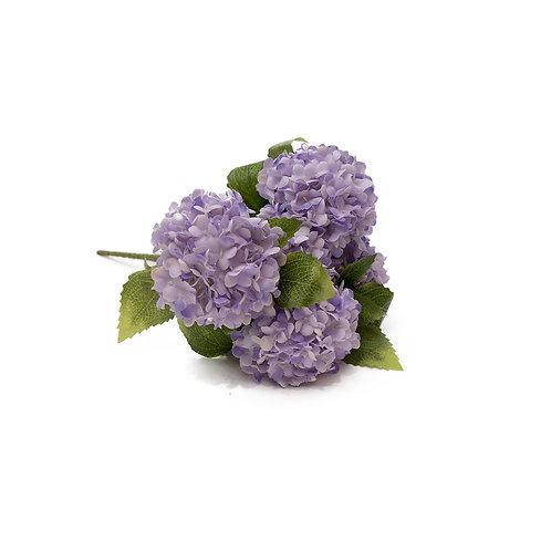 紫繡球花 (三頭)