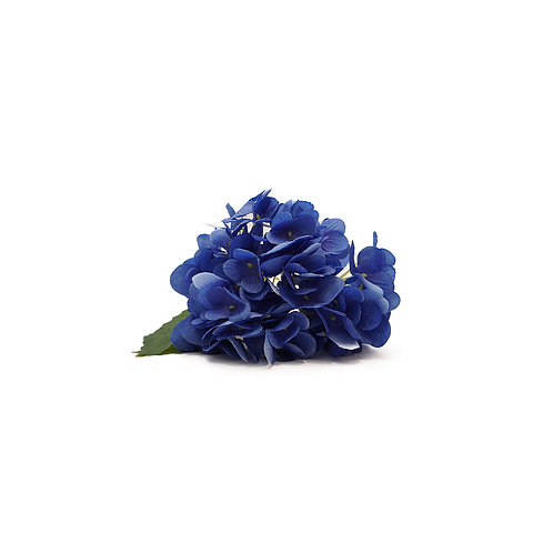 繡球花 (紫藍)