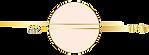 Ferrari Coaching Logo in gold no text.pn