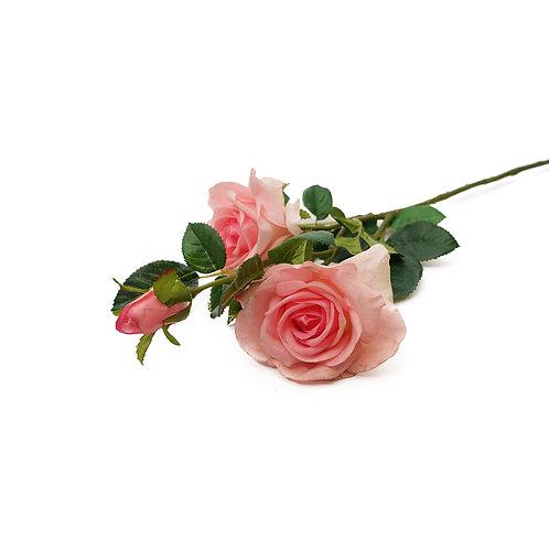 玫瑰 (粉)