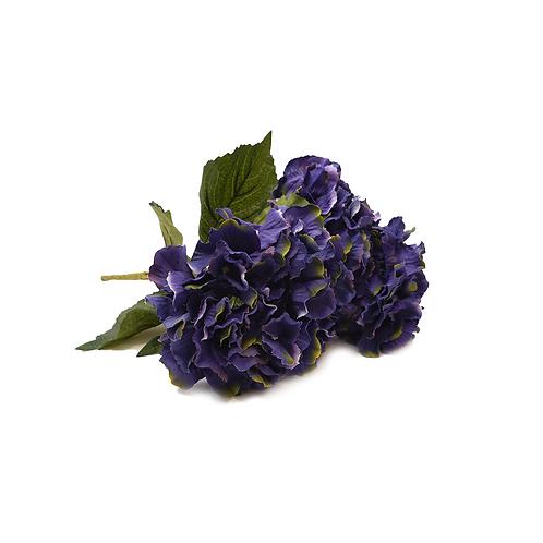 繡球 (紫)