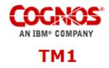 platform_assets_logo-cognos-tm1.png