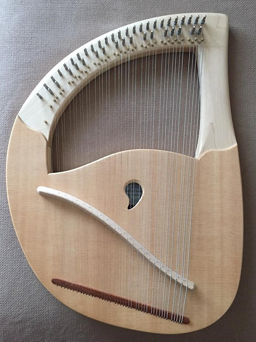 SANSOライアータイプⅡ42弦