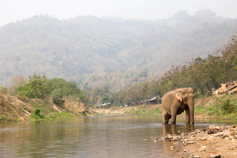 Thailand-0944.jpg