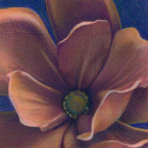 rusted magnolia