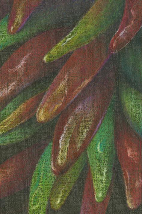 chili ristra, new mexico art series
