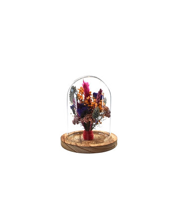 Globe Poppy