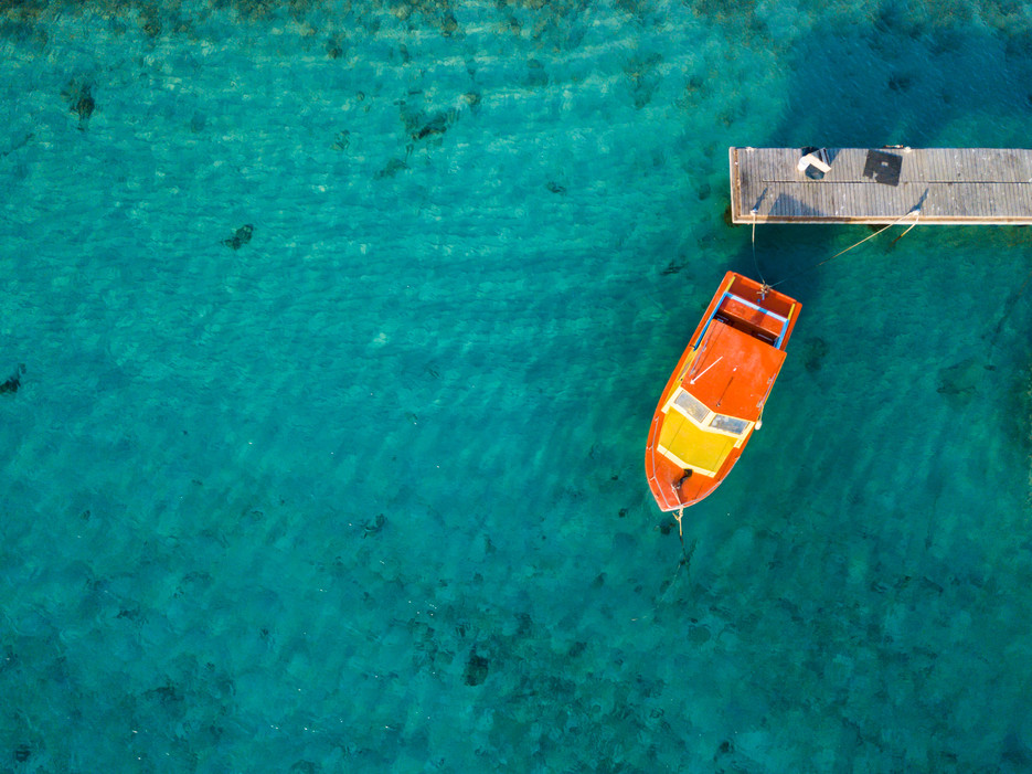 Bonaire Mar18-75.jpg
