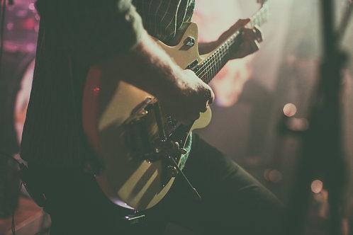 Düsenberg Guitar - Druck auf Aluplatte 20 x 30 cm