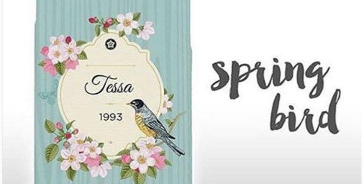 Spring Bird Edition