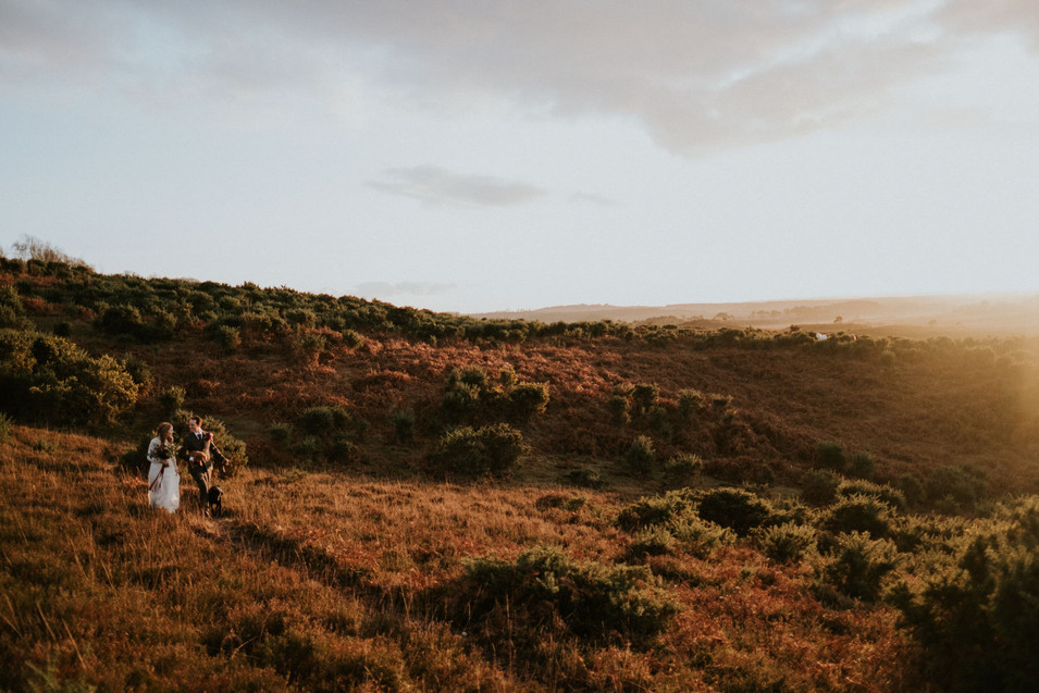 Beautiful wedding photography: sunset in the New Forest