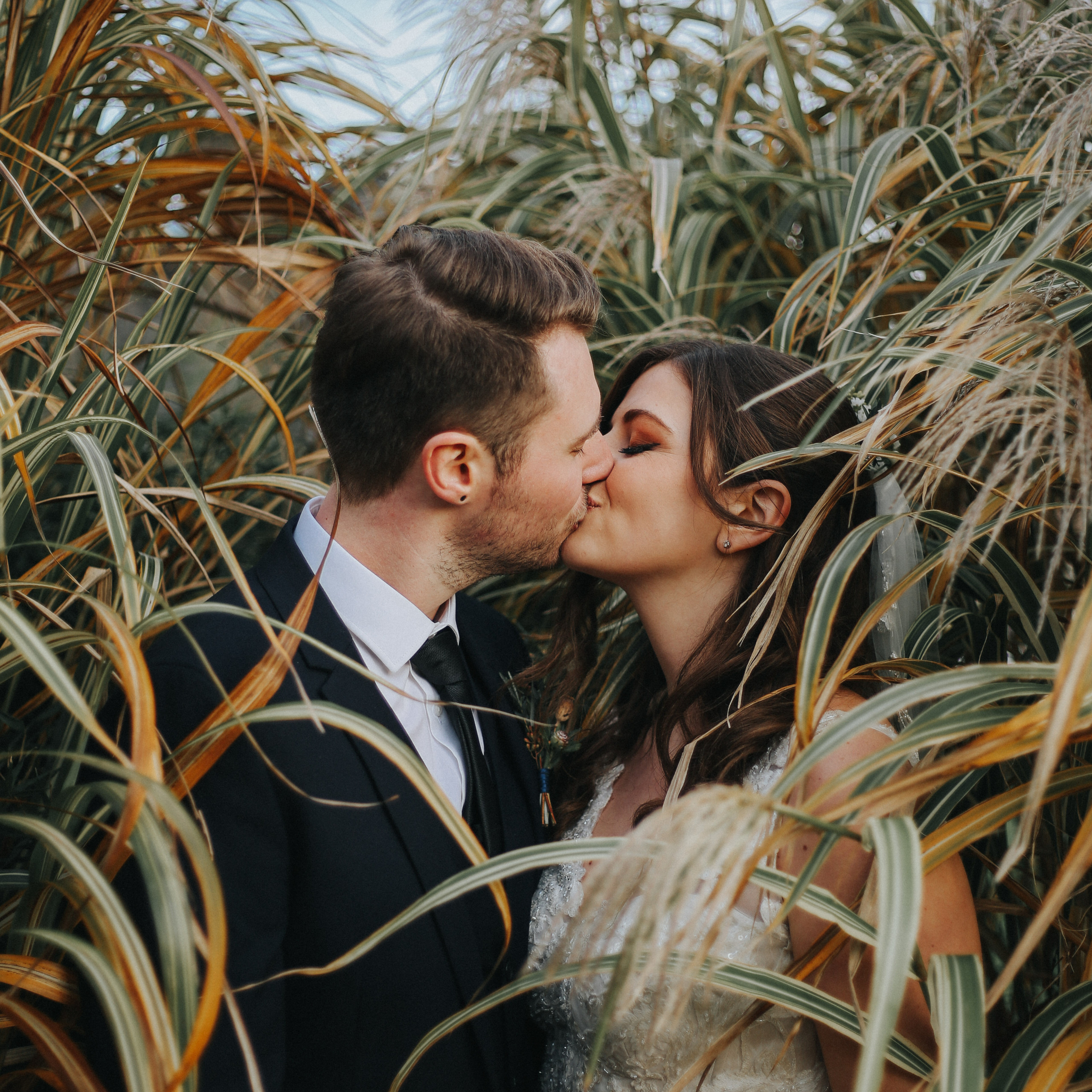 Bride and groom kiss in the reeds at wedding at wadhurst castle