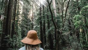 Pourquoi avoir besoin d'un guide pour des sorties en pleine nature ?