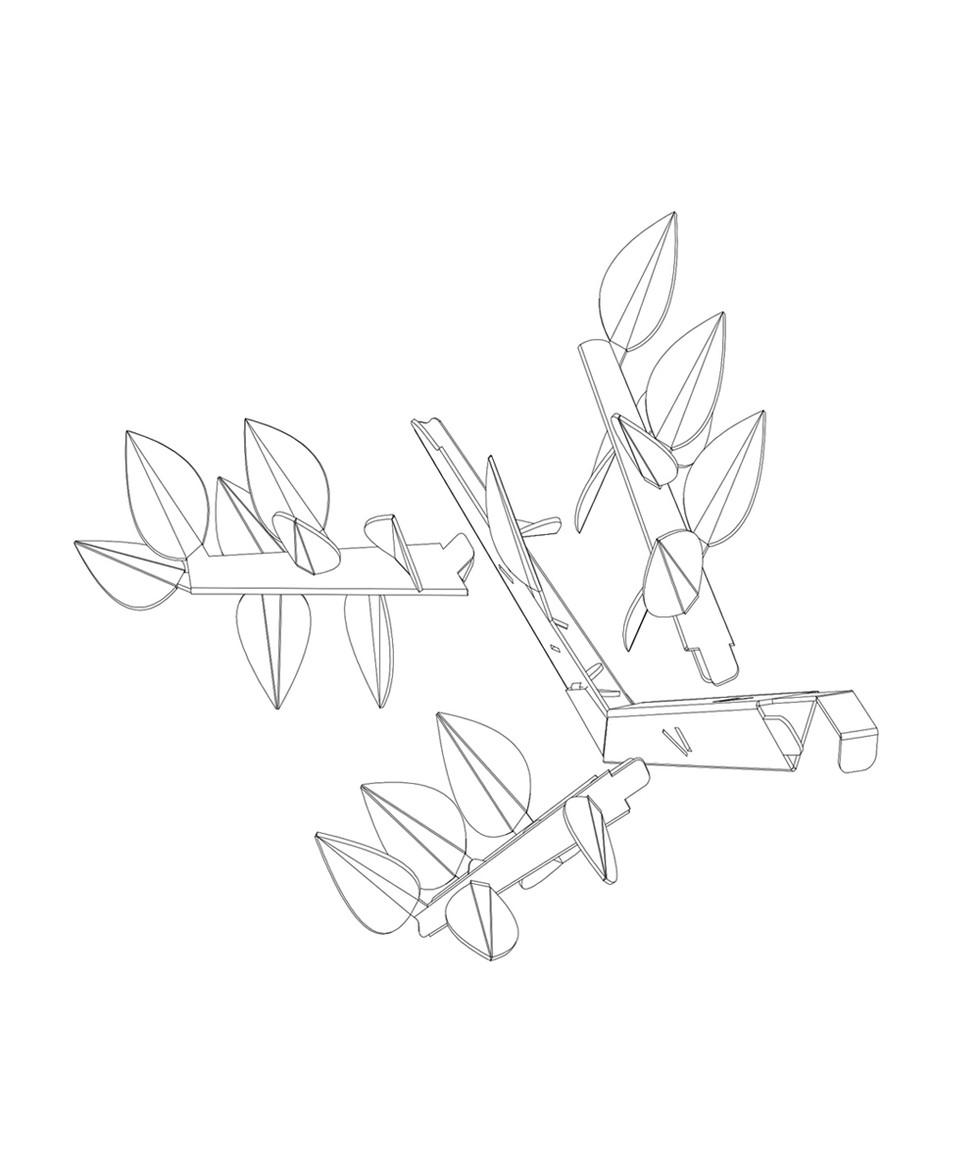 branch 1.jpg