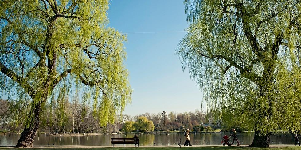Liquid Arch Walk - Regent's Park
